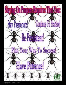 Stay On Purpose!