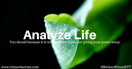 Analysing Life